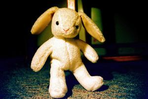 Velveteen Rabbit photo