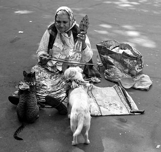A street woman plays music for her dog and cat